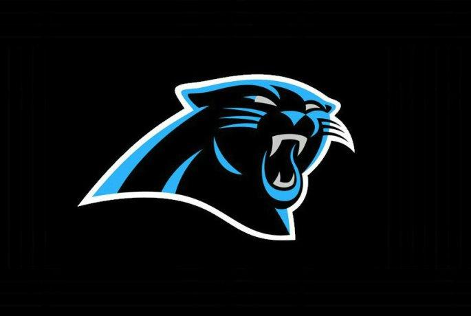 Panther 17