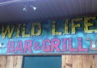 Wild Life Bar & Grill