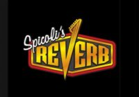 Spicoli's Reverb