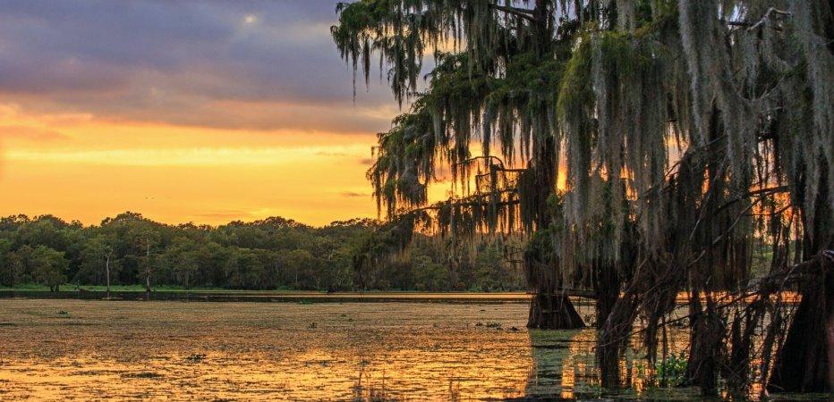 Louisiana image