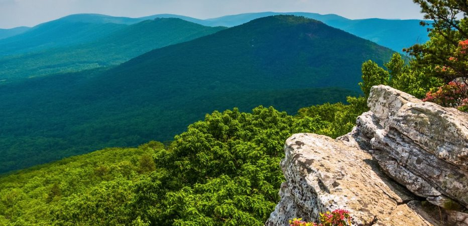 West Virginia image